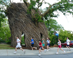 Photo of the KU Bird's Nest as Dog Days runners go by.